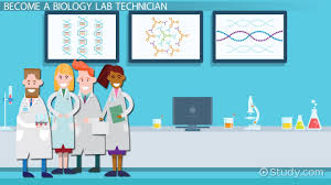 Job Description For A Marine Biologist Be A Biology Lab Technician Step By Step Career Guide