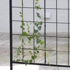 Downspout Trellis Modern U0026 Contemporary Trellises Hayneedle