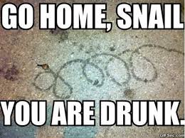 You Re Drunk Meme - gome home you are drunk meme 2015 jokeitup com
