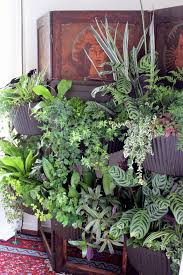 vertical gardening on a folding screen u2014 cocoon home