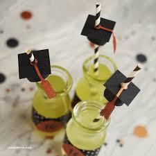 graduation accessories graduation party straw accessories lia griffith
