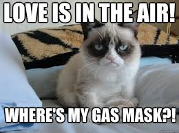 Love Is In The Air Meme - love is in the air where s my gas mask misc quickmeme