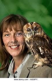 Owl Shoulder - owl on shoulder stock photos owl on shoulder stock images alamy