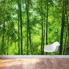 Photo Mural Wallpaper by Bamboo Forest Wall Mural