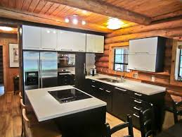 black kitchen cabinets in log cabin popular ikea kitchen cabinets for a more functional