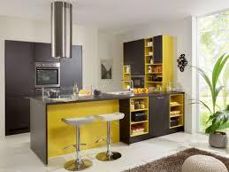 idee couleur cuisine des idées pour mettre une touche de couleur dans sa cuisine