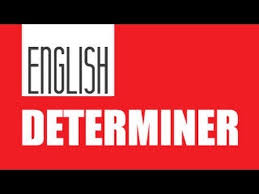 determiner english grammar class 7th youtube