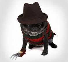 Freddy Krueger Halloween Costume Kids Freddy Krueger Dog Costume