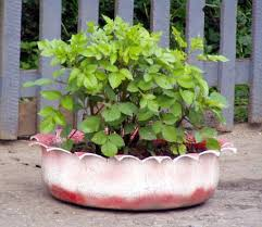 diy outdoor planters of recycled tyres shelterness