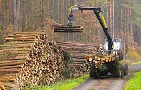9 1 million trees supply the u s toilet paper market bidetsplus