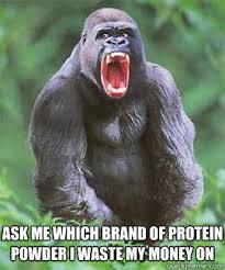 Funny Gorilla Meme - supplement gorilla memes quickmeme