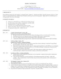 sample resume business banker augustais