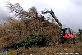 drew graham contracting ltd site tree clearance specialists