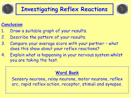 Describe A Reflex Action Key Area 3 Control And Communication Nervous Control Learning