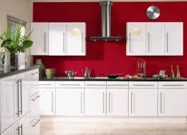 Order Kitchen Cabinet Doors Beneficial Buy Kitchen Doors Tags Replacing Kitchen Cabinet