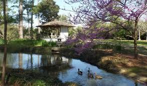 japanese garden pictures japanese garden hermann park conservancy