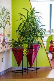 best house plants bedroom classy plants that help you sleep best oxygen producing