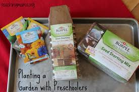 planting a garden with preschoolers teaching mama