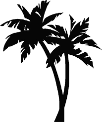 palm tree drawing stickers by ckesem redbubble