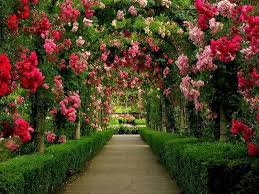 images of beautiful gardens the most beautiful garden webzine co