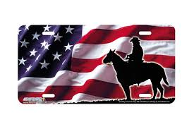 Horse With American Flag Airstrike 433