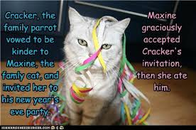 Happy New Year Cat Meme - lolcats new years page 2 lol at funny cat memes funny cat
