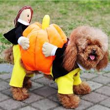 Funny Halloween Costumes Dogs Pumpkin Carrying Dog Costume Costumes Dog Pet Costumes