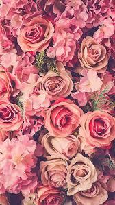 Rose Flower Design Best 20 Beautiful Rose Flowers Images Ideas On Pinterest Love