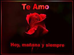 bonitas de rosas rojas con frases de amor imagenes de amor facebook imagenes con rosas miexsistir