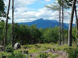 nh homes with mountain views mountain view properties nh