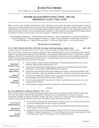 free executive resume procurement category manager resume exle best of free retail