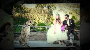 affordable wedding venues in san diego wedding venue affordable wedding venues san diego affordable