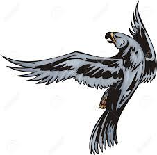 eagle with dark blue plumage predatory birds illustration