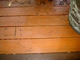 Wood Stains Deck Stains Finishes From World Of Stains how i got rid of leaf and pine needle stains on a deck popular