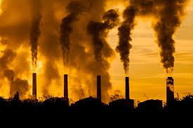the link between air pollution and lung cancer patient advice