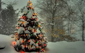 snowy christmas pictures christmas tree shining in the snowy forest wallpaper holiday