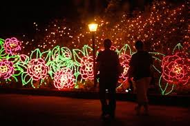 magic christmas in lights opens nov 23 at bellingrath gardens and