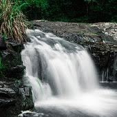 Gardeners Falls Maleny - gardners falls in maleny sunshine coast stock photo 662593960 istock