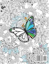amazon com coloring book butterflies and flowers stress
