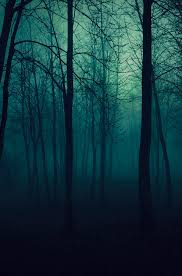 wallpaper tumblr forest imagenes tumblr bosque buscar con google auditorio pinterest
