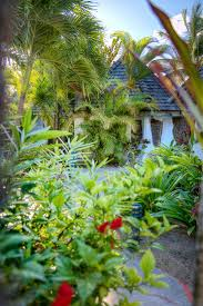15 best gauguin cottages at galley bay resort images on pinterest