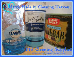 Baking Soda Upholstery Cleaner Cleaning Dream Team Vinegar And Dawn U2013 Sisters Shopping Farm And Home