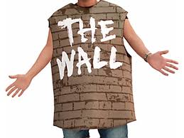 partycity costumes party city selling costume called the wall wptv