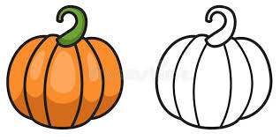pumpkin black and white pumpkin colorful and black and white pumpkin for coloring book stock