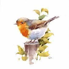 pin by anna szumańska on ptaszki pinterest bird paintings and
