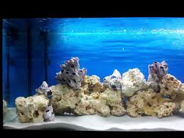 15 kg natural white aquarium silica sand types of aquariums ebay