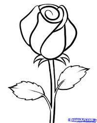 cartoon sketch of rose drawing of sketch