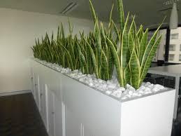 plant stand plant stands forficeoffice desk standplantfice stand