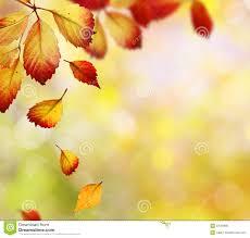 falling autumn leaves royalty free stock photo image 27056695