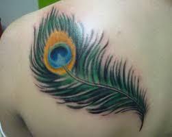 peacock feather tattoo design 5579897 top tattoos ideas